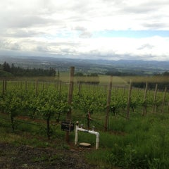 Photo taken at Winter's Hill Estate Vineyard & Winery by Umi Hashitsume F. on 5/13/2013
