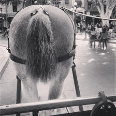 Photo taken at Horse-Drawn Streetcars by Raquel L. on 3/25/2013