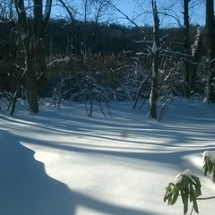 Photo taken at Chappaqua, NY by chuck m. on 1/24/2016