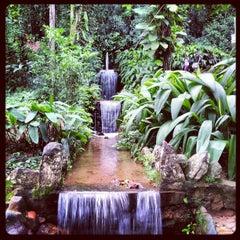 Photo taken at Jardim Botânico do Rio de Janeiro by Egon A. on 3/14/2013