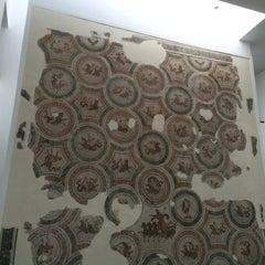 Photo taken at The Bardo National Museum I Musée national du Bardo I المتحف الوطني بباردو by Darya N. on 9/3/2014
