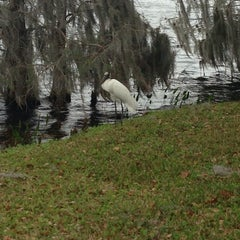 Photo taken at Lake Ivanhoe Park by Courtney N. on 2/28/2015