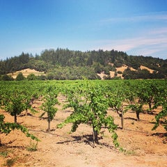 Photo taken at Talty Winery by WineryCritic on 6/21/2014