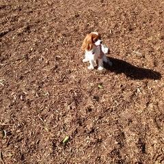 Photo taken at Dog Park by Jen C. on 6/2/2014