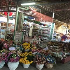 Photo taken at ตลาดโก้งโค้ง บ้านแสงโสม (Talard Kong Khong) by Satit B. on 7/11/2015
