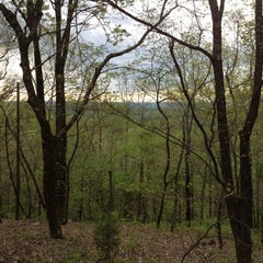 Photo taken at Peavine Falls Overlook by Herbert M. on 3/24/2012
