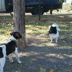 Photo taken at White Rock Lake Dog Park by Lupita R. on 11/25/2012