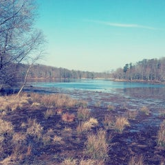 Photo taken at USGS Patuxent Wildlife Research Center by The P. on 3/23/2013