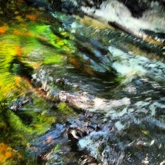 Photo taken at Jacksonville Arboretum & Gardens by Kat M. on 5/14/2013