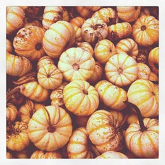 Photo taken at Kruger's Farm Market by Megan S. on 10/13/2012
