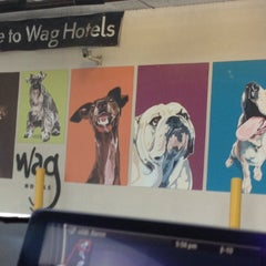Photo taken at WAG Hotel by Brandon D. on 9/21/2013