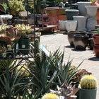 Photo taken at Watters Garden Center by Watters Garden Center on 12/10/2013
