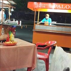 Photo taken at Tacos Palomo by Mayra G. on 3/23/2014
