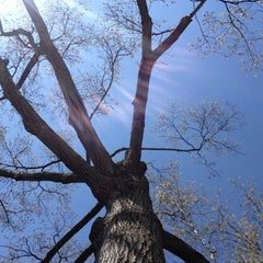Photo taken at Munsey Park Elementary School by Stefan H. on 5/3/2014