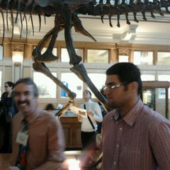 Photo taken at Musée Redpath Museum by Saulo A. on 3/25/2012