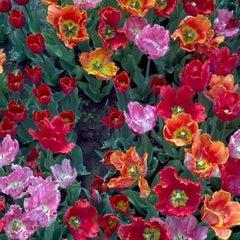 Photo taken at Washington Park by Michael V. on 4/21/2012