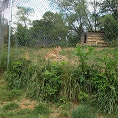 Photo taken at Carolina Tiger Rescue by Katie B. on 5/6/2012