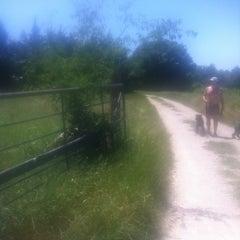 Photo taken at Cedar Ridge Preserve by Meghan B. on 4/24/2012
