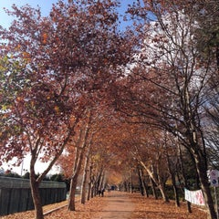 Photo taken at 경북대학교 (Kyungpook National University) by NamChul S. on 11/29/2014