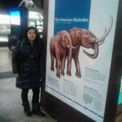 Photo taken at Exhibit Museum of Natural History by Heydi M. on 3/19/2014
