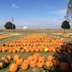 Photo taken at Neganguard Pumpkin Patch by Jessica M. on 10/6/2015