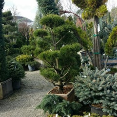 Photo taken at High Hand Nursery & Cafe by Kelsey F. on 12/22/2014