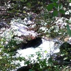 Photo taken at Burke Lake by Cathi E. on 10/13/2012