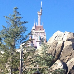 Photo taken at Be Our Guest Restaurant by Carlos R. on 1/31/2013