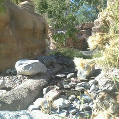 Photo taken at Springs Preserve by Belinda T. on 10/29/2012