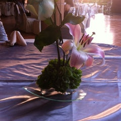 Photo taken at Quinta El Eden by Gabriela G. on 7/13/2014