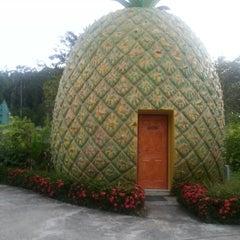 Photo taken at บ้านผาสวรรค์ รีสอร์ท (อุทยานไม้หอม อุทยานผลไม้) by Ekaterina Z. on 11/16/2014