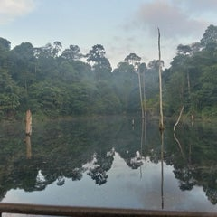 Photo taken at Fishing Lake at Community Forest by Mohd Azmi A. on 6/30/2013