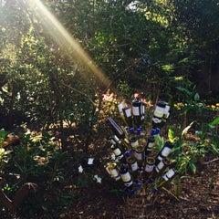 Photo taken at Rombauer Vineyards by Diane P. on 2/21/2015