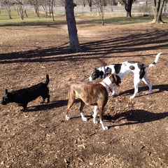 Photo taken at Eau Claire Dog Park by Jeanny H. on 4/26/2014
