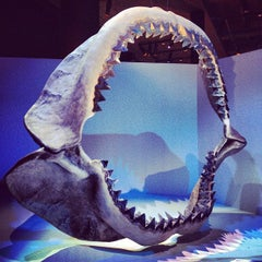 Photo taken at Houston Museum of Natural Science by Brian G. on 9/15/2012