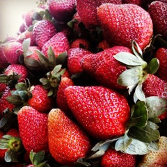 Photo taken at Strawberry Farm by Nino A. on 6/2/2013