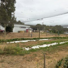 Photo taken at Tuckerberry Hill Blueberry Farm by Quentin A. on 1/26/2013