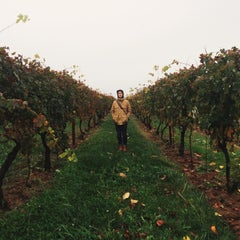 Photo taken at Penns Woods Winery by Rachel on 11/1/2014