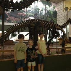 Photo taken at Peabody Museum of Natural History by Tracey H. on 6/21/2012