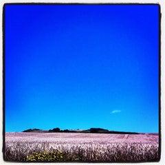 Photo taken at Cap Gris Nez by David D. on 7/22/2012