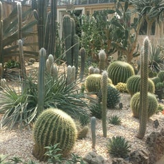 Photo taken at Garfield Park Conservatory by Iliona I. on 6/30/2015
