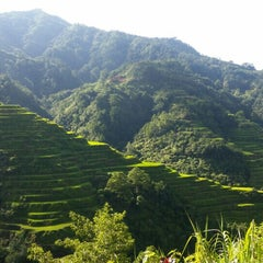 Photo taken at Banaue Rice Terraces Viewpoint by Rogelyn A. on 6/19/2015