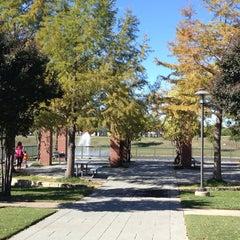 Photo taken at Maribelle M. Davis Library by Susan P. on 10/31/2013