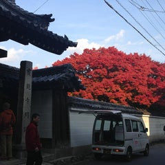 Photo taken at 宝鏡寺門跡(百々御所) by ya-ping y. on 11/24/2013