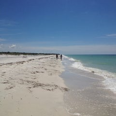 Photo taken at Caladesi Island State Park by Christopher P. on 9/3/2013
