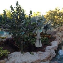Photo taken at Discovery Cove by Timothy on 11/21/2012