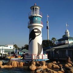 Photo taken at SeaWorld Orlando by Timothy on 11/21/2012