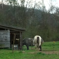 Photo taken at Southside , AL by Kandie N. on 2/29/2012