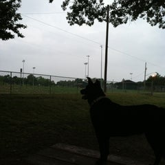 Photo taken at Medina Dog Park by Jennifer on 8/5/2012