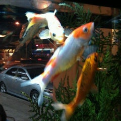 Photo taken at Sakura Japanese Restaurant by Andrew P. on 10/27/2011